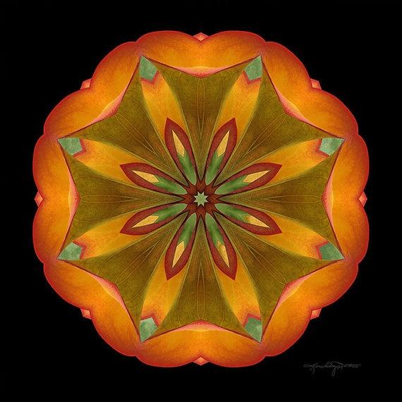 Mandala Meditation Art Balance & Healing  by karencaseysmith