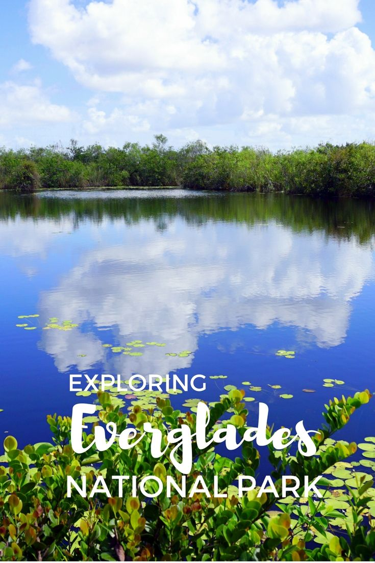 Guide and tips to visiting Anhinga and Flamingo in Everglades National Park in Florida, USA with kids