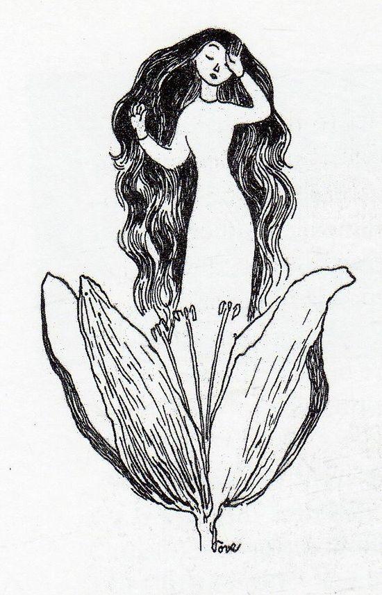 Tulppaani Illustration by Tove Jansson