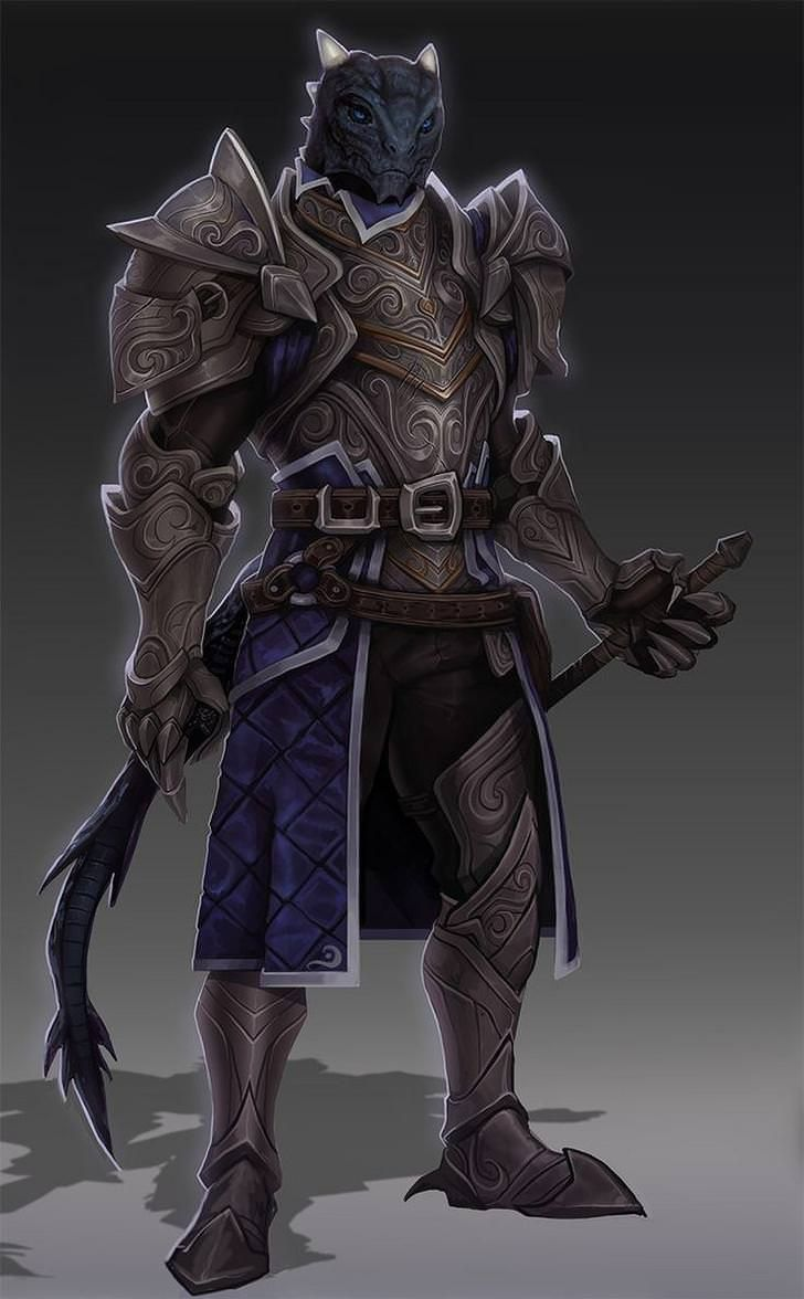 DnD Dragonborn - inspirational in 2020   Dungeons, dragons characters, Fantasy character design ...