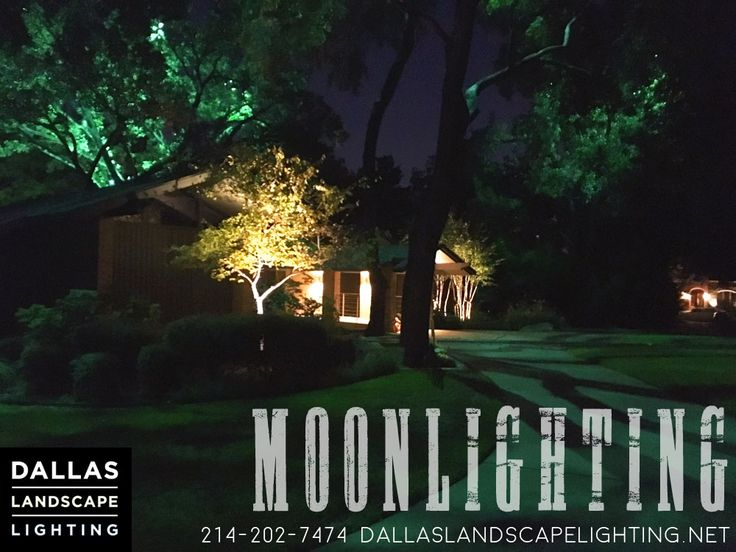 46 best moonlighting installations by dallas landscape lighting from dallas landscape lighting during a fullmoon everyone gets to enjoy the beautiful moonlit glow cast down aloadofball Image collections