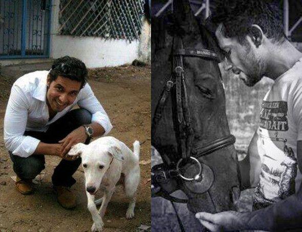 Randeep Hooda with pet dog Candy and horse Johnny Walker. Pic/Randeep Hooda's Twitter account | #indipin
