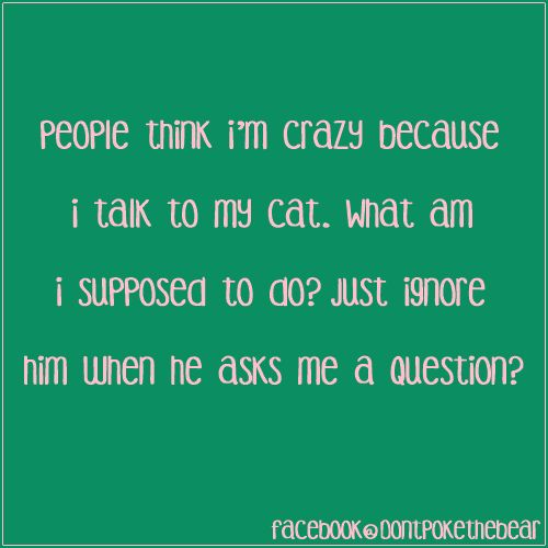 I've always talked to my kitties.