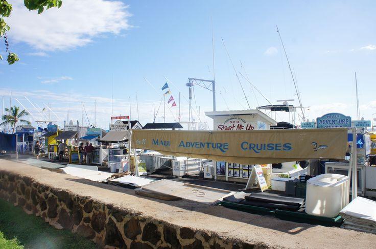 maui cruises port