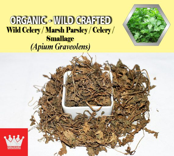 Rheumatism, gout, hysteria, nervousness, headache, weight loss, loss of appetite, exhaustion, urinary tract, digestive aid, regulating bowel movements, flatulence, increase sexual desire, reduce the flow of breast milk, stimulating glands, menstrual problems, blood purifier, sleepiness, increase urine to decrease fluid retention, arthritis symptoms, decrease blood pressure, decrease blood sugar, decrease blood clotting, muscle relaxation, etc #DriedHerbs #HerbalRemedies #HerbalMedicine