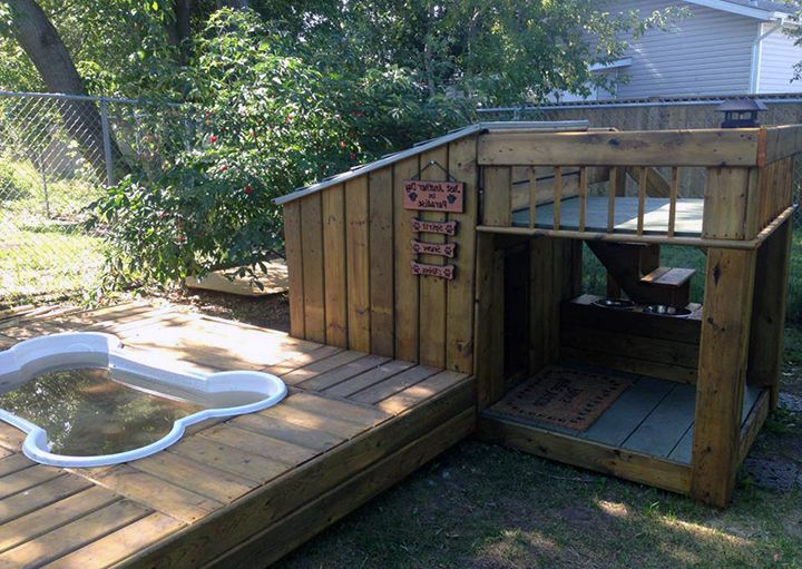 another fine example of a cool dog house with a swimming pool