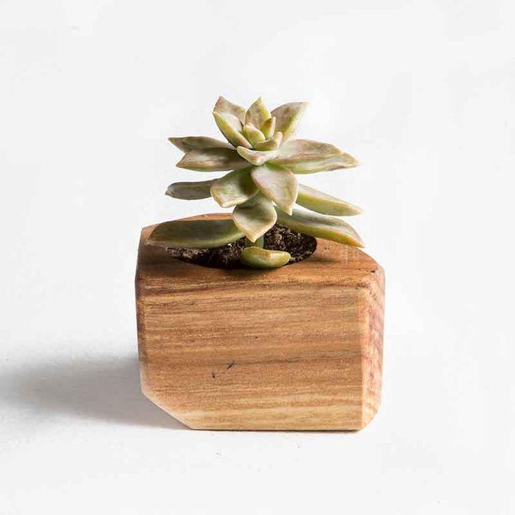 Base de madera para plantas. #Villarrica