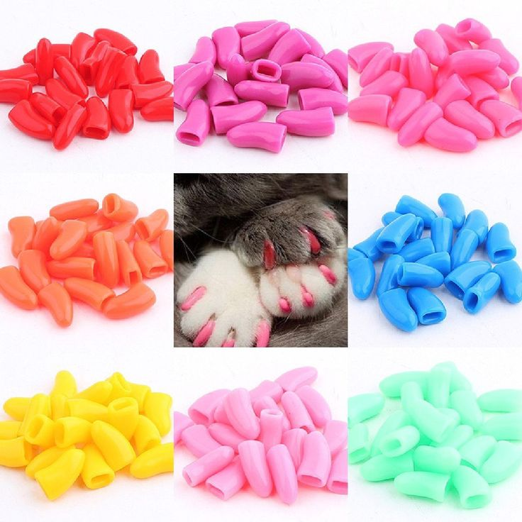 Amazon.com : Meidus more lovely Non-Toxic 20Pcs Pet Cat Paw Claw Control Nail Caps Covers Protector Random Color S : Pet Supplies