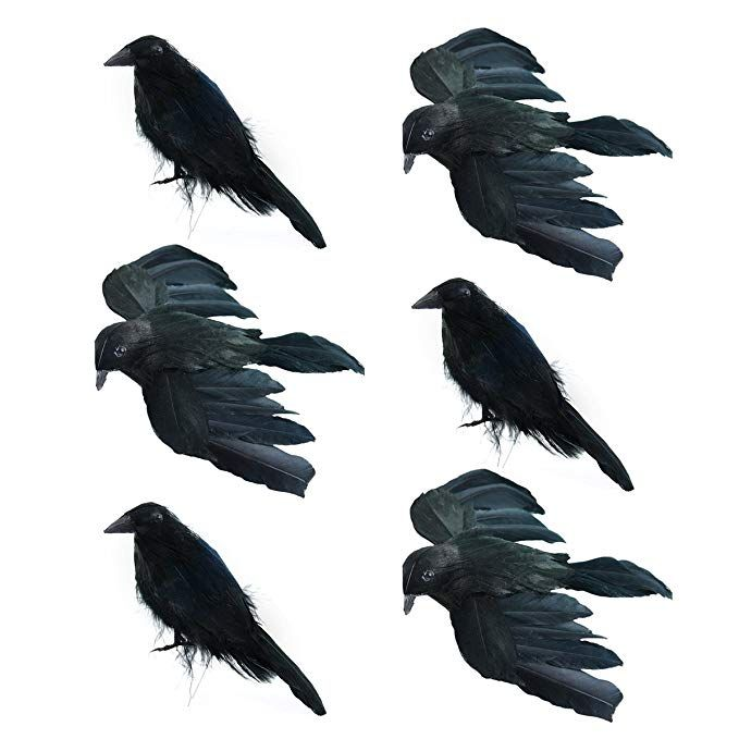 Set Of 6 Crows For Halloween Decorations 4 Inches 3 Standing And 3 Flying Real Feathers And Wire To At Halloween Decorations Halloween Holidays Halloween