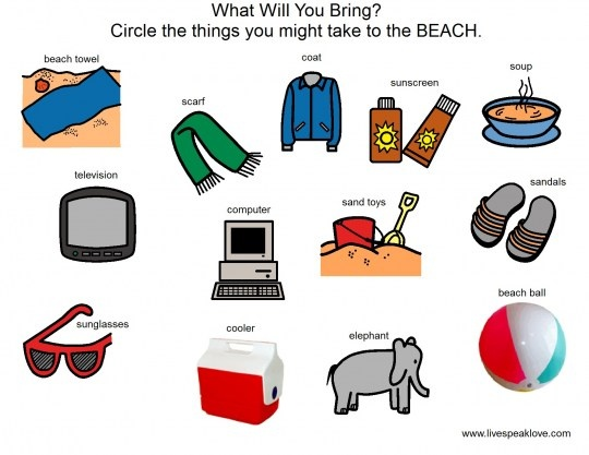 What Will You Bring Beach