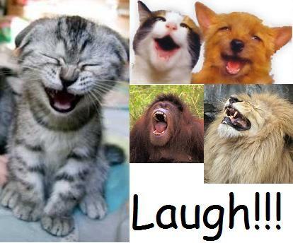18 best images about laugh out loud on Pinterest | Nancy