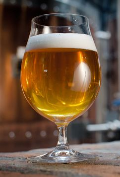"Grain d'Orge, a gold-cup homebrew clone of Brasserie's bière de garde 'Grain d'Ogre'.  ""Subdued ale aromatics contribute to an easy complexity without fruity esters. Full-bodied with a malty finish."""