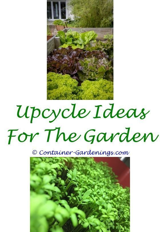home gardening tips for beginners in india - stepped garden design on home cleaning tips, home theater tips, photography tips, herb gardening, home security tips, container gardening, gardening guides, home sports, home beauty tips, home exercise tips, home fitness, home safety tips, flower gardening, organic gardening, home remodeling tips, landscaping tips, home decor tips, real estate tips, home business tips, home projects, home diy tips, parenting tips, home garden tips, home recycling tips, vertical gardening, home design tips,