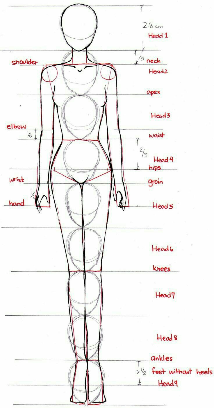 proportions were always something I struggled with. maybe this will help in future -xo