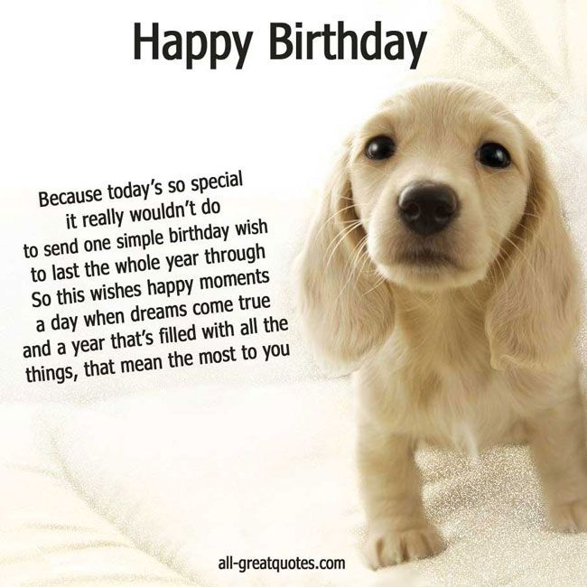 74 best Birthday images – Birthday Card from Dog