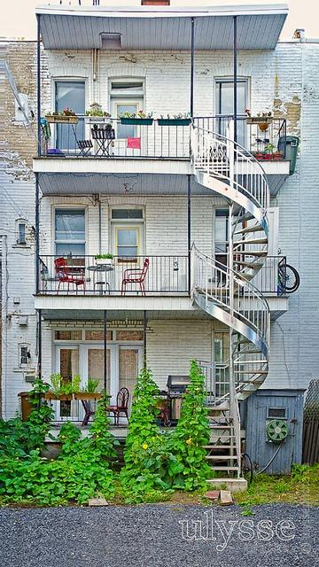 Backyard, via Flickr.