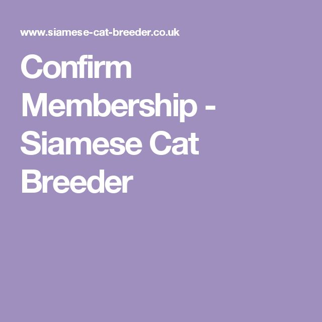Confirm Membership - Siamese Cat Breeder