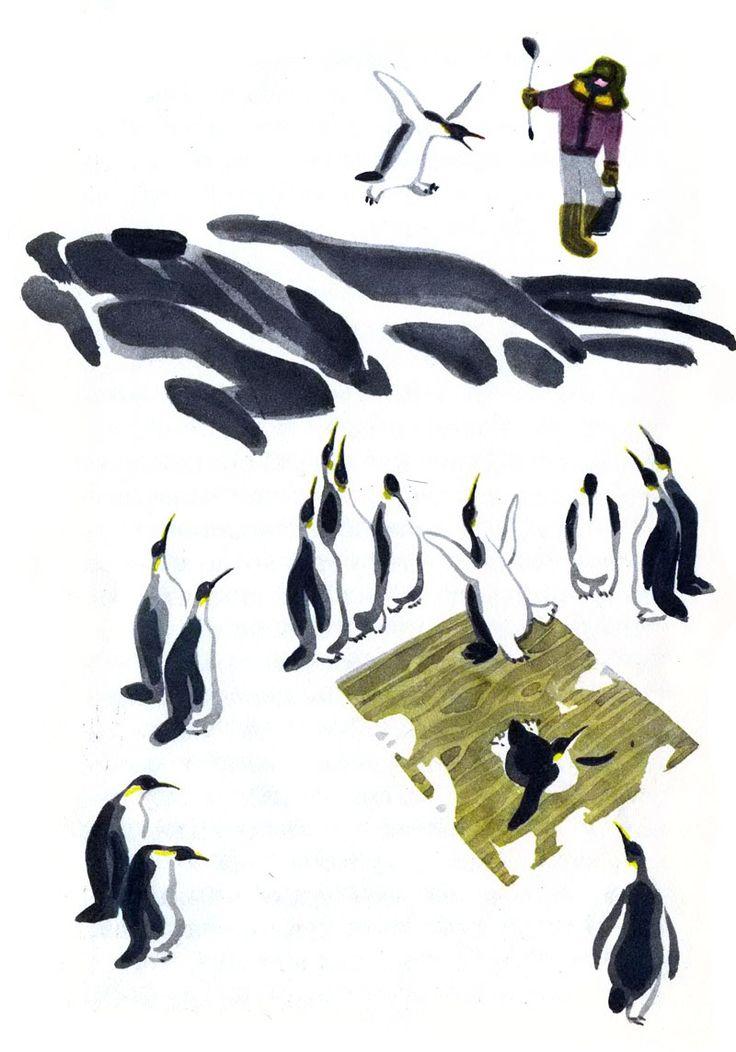 """Май Митурич «Про пингвинов»   """"Картинки и разговоры"""""""