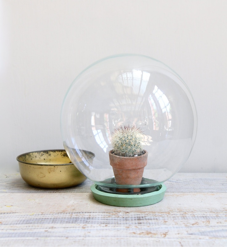 Glass Centerpiece Dome : On hold vintage glass terrarium display dome nooks