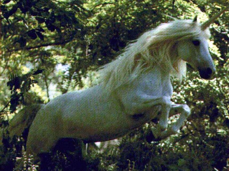 Unicorns And Fairies Real 100 best images...