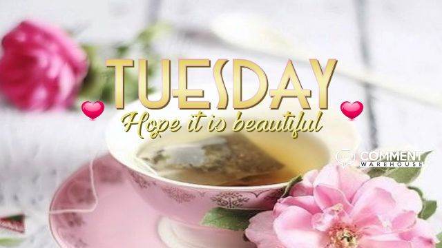 Tuesday Hope It Is Beautiful   Tuesday Comments & Graphics, Happy Tuesday Comments, Happy Tuesday Images, Tuesday Graphics, Tuesday Pics, Tuesday Greetings