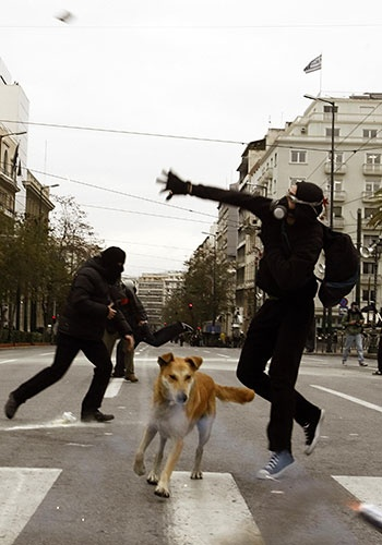 riot dog greece