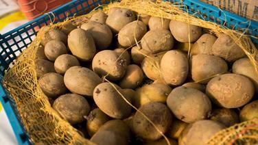 1000 ideen zu kartoffelanbau auf pinterest kartoffelpflanzen kartoffeln ziehen und garten. Black Bedroom Furniture Sets. Home Design Ideas