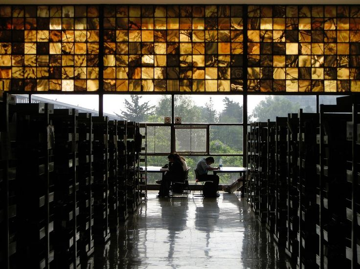 Image result for unam central library