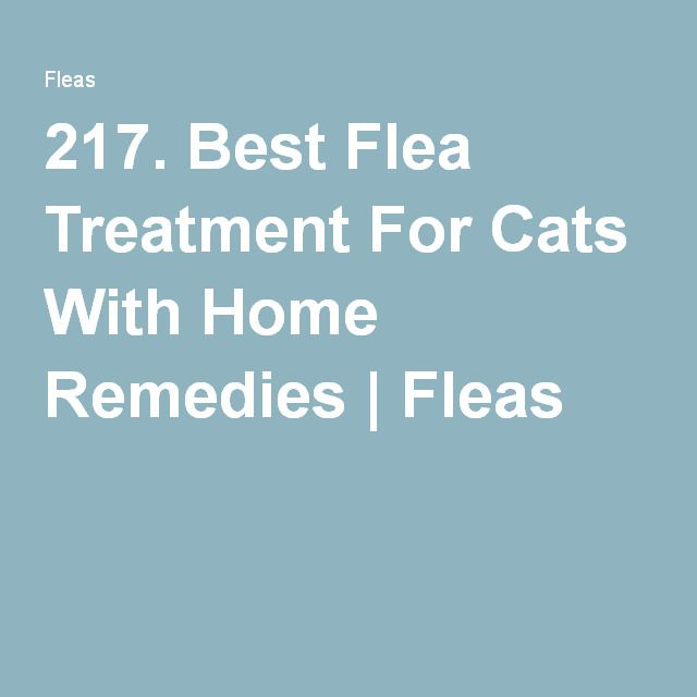 217. Best Flea Treatment For Cats With Home Remedies | Fleas