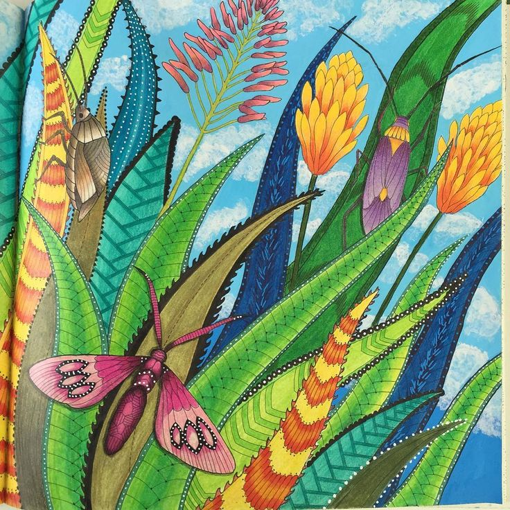 The Grass Is Always Greener Colored By Marnie Nunes Tropical Wonderland Millie Marotta