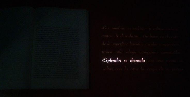 Esplendor - Octavio Paz Museo de Bellas Artes.