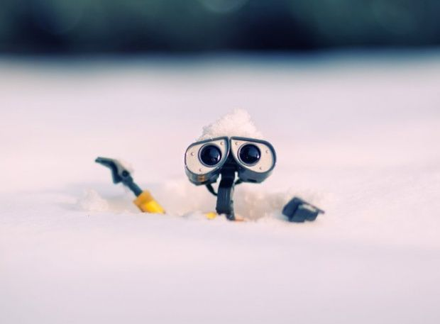 Wall-E and Danbo photography | InspireFirst