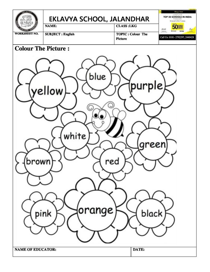 Pre- Primary Worksheets의 최고 인기 이미지 71개