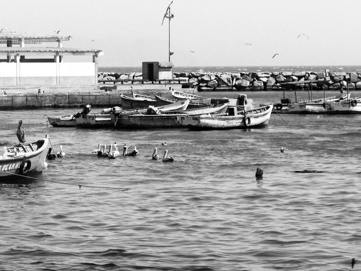pescadores by michelle.v