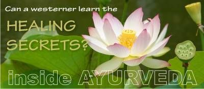 Inside Ayurveda - a welcomed online course for us.