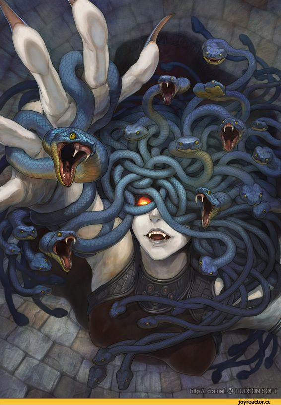 красивые картинки,art,арт, арты,Медуза горгона,Monster Girl,Monster Girls