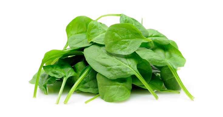 Learn more about spinach nutrition facts, health benefits, healthy recipes, and other fun facts to enrich your diet.