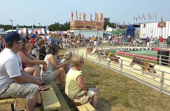 Pig Races, Opening Day at #SaratogaCountyFair http://www.saratoga.org/visitors