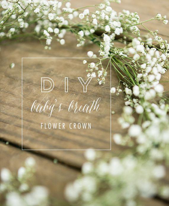 DIY baby's breath flower crown from Lauren W Photography | 100 Layer Cakelet @MrsGator 6 month photos