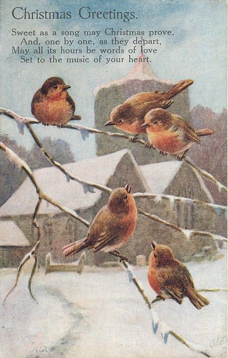 5 robins on snowy branches, church in background.
