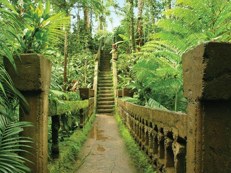 Staircase at Paronella Park