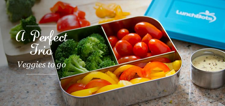 Like these as an alternative to ziploc plastic containers, etc..  LunchBots Stainless Steel Food Containers