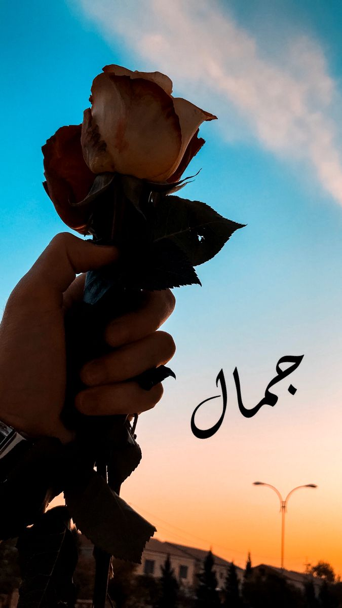 غيوم وسماء Photo Quotes Beautiful Arabic Words Love Quotes Wallpaper