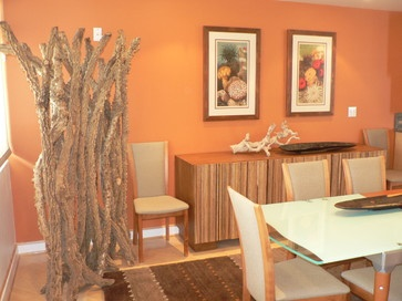 Orange Dining Room Design Ideas Pictures Remodel And Decor