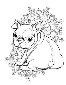 pin en bulldogs