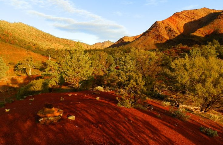 Late afternoon at Parachilna Gorge near Angorichina in South Australia's Northern Flinders Ranges