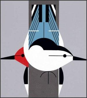 Charley Harper. @designerwallace