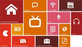 Entertainment & Media Outlook for the Netherlands 2014-2018 - PwC