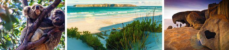 Themenwoche Südaustralien: Lasst euch durch zahlreiche Artikel inspirieren und lernt, was die Region in Australien besonders macht. Inklusive Gewinnspiel!