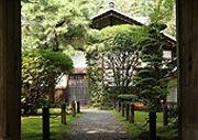 Bamboo in the Japanese garden   Real Japanese Gardens